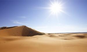 sahara desert summer